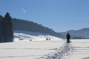Snow Shoeing| Manali | Above 14000ft